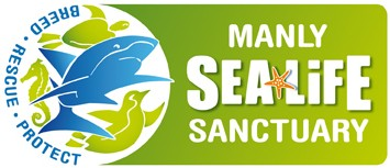 Manly SEA LIFE Sanctuary - Accommodation Perth